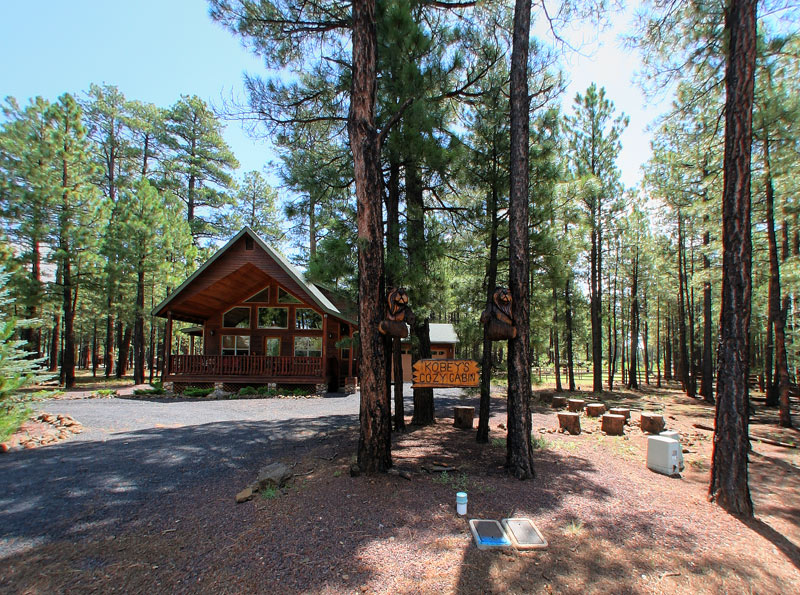 pinetop guys The jewel of pinetop country club is a pristine championship golf course including member-guest invitational tournaments for men life at pinetop: membership.